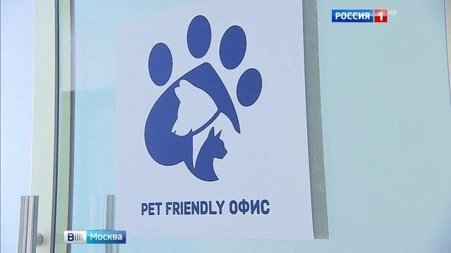 Вести-Москва • Вести-Москва. Эфир от 13.08.2016 (07:40)