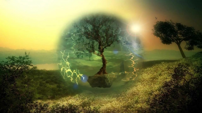 ФУТАЖ Дерево (абстракция)