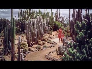 Robert Cristian - Can You Hear Me (Original Mix)