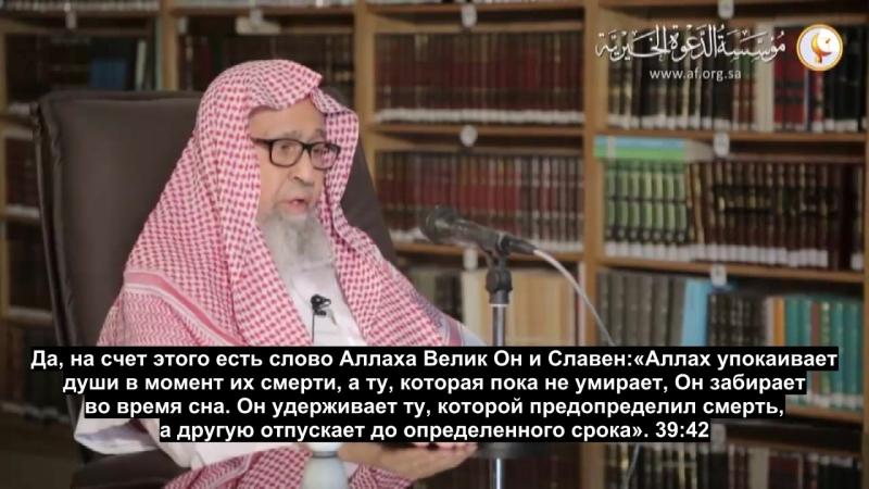 шейх Салих аль Фавзан души живых и мертвых встречаются в барзахе