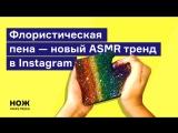Флористическая пена – новый ASMR тренд в Instagram