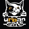 Роллер школа и роллер команда-Городские Коты.