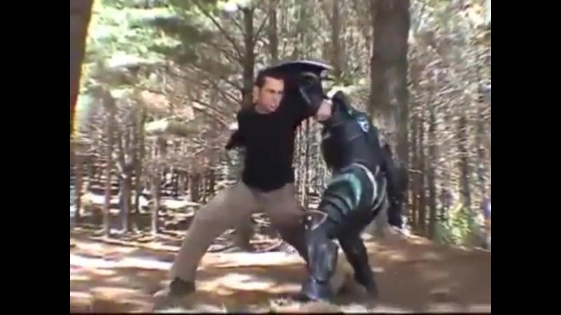 ДДФ, Съёмки Дино Грома тренировка для фильма-1995