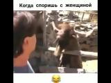 Когда споришь с женой!))