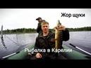 Жор щуки. Рыбалка в Карелии. Ловля на спиннинг.