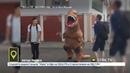 По центру Уфы разгуливал динозавр