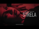 Индивидуальный ролик для студии танцев Strela
