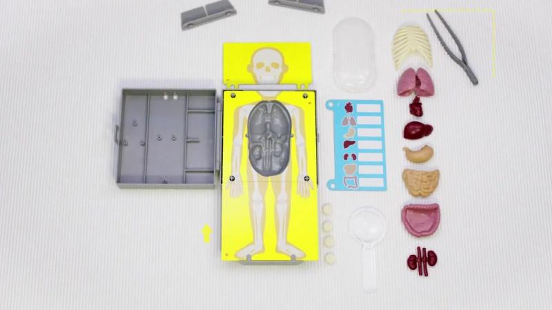 Познавательный набор 4M Юный врач. Хирургия