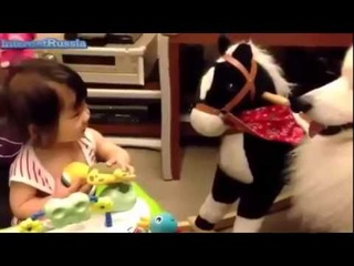 МОИ ЗАБАВНЫЕ ЖИВОТНЫЕ Смешные детки Дети и животные