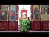 Епископ Адриан - Чтение коленопреклоненных молитв в день Святой Троицы