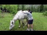 Ждешь принца на белой лошади, а он все не едет.. Так вот это почему..