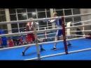Бокс Кострома 19 11 2017 Веселков Трошин