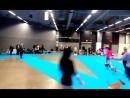 Фрося (Элитлайн Шарлотта Сноуфлейк) - Швеция CACIB (Интерчемпион) 07.01.18