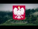Гимн Польши Mazurek Dąbrowskiego Марш Домбровского Русские тирты