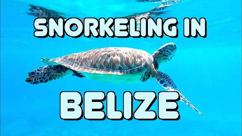 ОС 128 / Большой Барьерный риф Белиза, Центральная Америка / Snorkeling in Belize