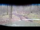 Лес лесной болван