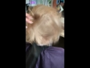 Совершенный Blond Me❤️