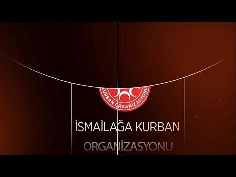 İsmailağa Kurban Organizasyonu 2018 - İsmailağa Videoları