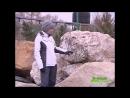 Зеленая передача. 21.11.17. Выбираем ландшафтный камень. Часть 1