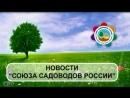 рубрика Новости Союза садоводов России