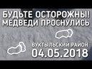 БУДЬТЕ ОСТОРОЖНЫ / МЕДВЕДИ ПРОСНУЛИСЬ / 04.05.2018 / БРАТЬЯ ПРИХОДЬКО