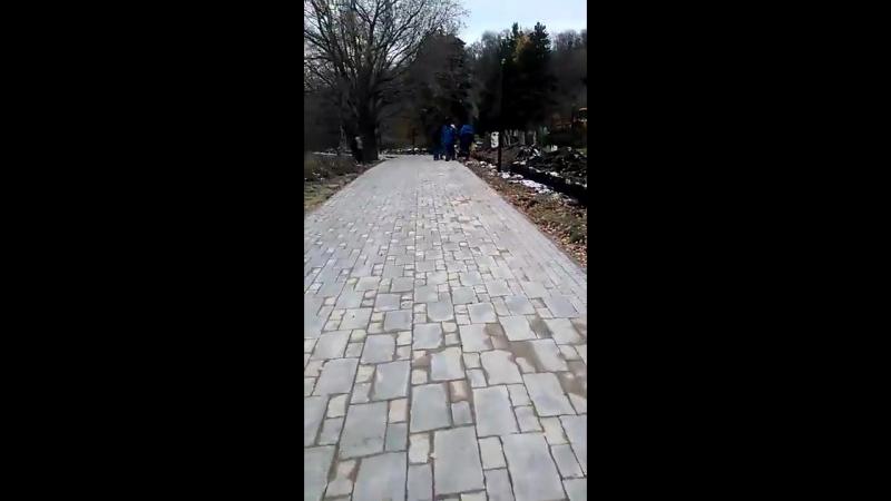 Днем в центре Ульяновска в парке Дружбы Народов на глазах у женщины с ребенком зарезали барана