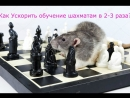 Как ускорить обучение шахматам в 2-3 раза? Рекомендация Артёма!