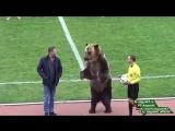 Такое можно увидеть только в России!