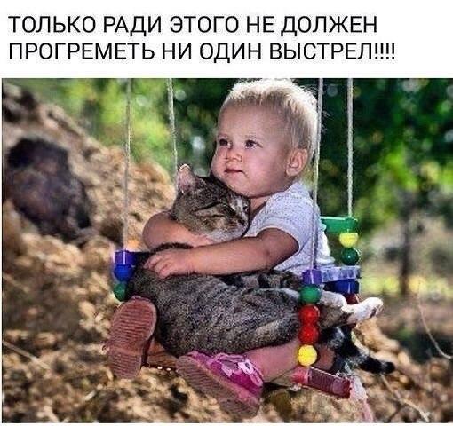 https://pp.userapi.com/c824701/v824701550/844cb/gfzJvCobQ3M.jpg