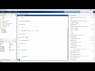 Using Command Window in MatLab Training Video