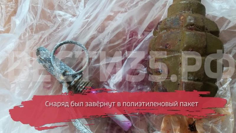 Вологжанин нашёл боевую гранату у мусорных баков