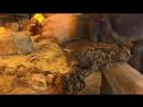 Изготовление журнального стола из слэба массива тополя чистка от коры