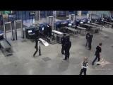 Сотрудники ЛУ МВД России аэропорта Домодедово привлекли к административной ответственности блогеров-«шутников»