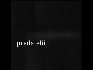 Predatelii-предатели