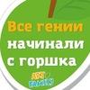 Франшиза детских садов ARTFAMILY