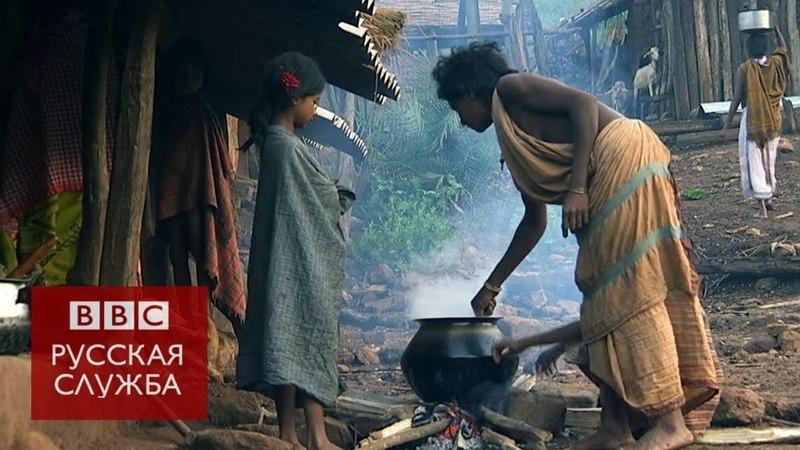 Как искоренить нищету за 15 лет документальный фильм Би би си