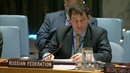 Russian DPR Polyanskiy at the UNSC on regional cooperation (African Union))