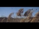Deven Coleman Broken Wings Official Music Video