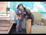 Дамир (избранное, пятилетка)))),
