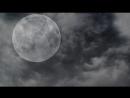 [†СТРАШНЫЕ ИСТОРИИ ОТ ВОРОНА†] История На Ночь - ПАРАЗИТ