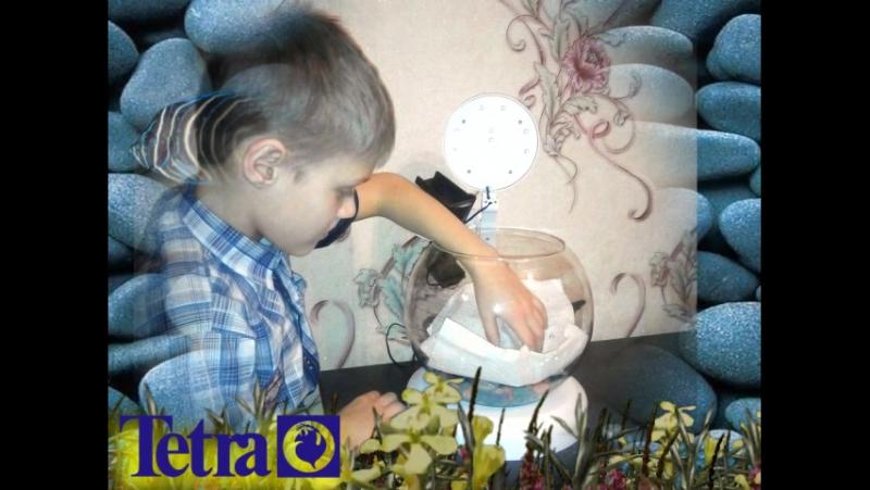 Белобородов Андрей стал аквариумистом благодаря мастер-классу компании Tetra