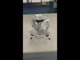 Le robot de la s
