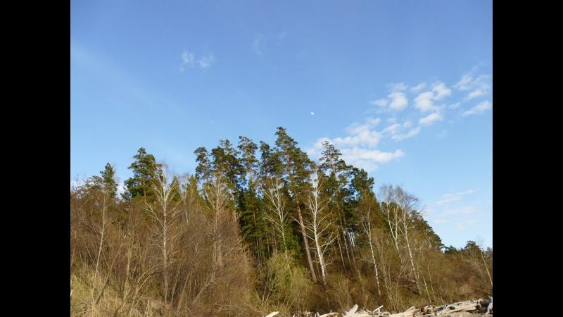 Облака над лесом смотреть онлайн без регистрации