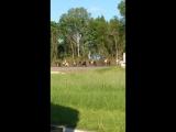 Кавалерию сняли на видео в Гагарине