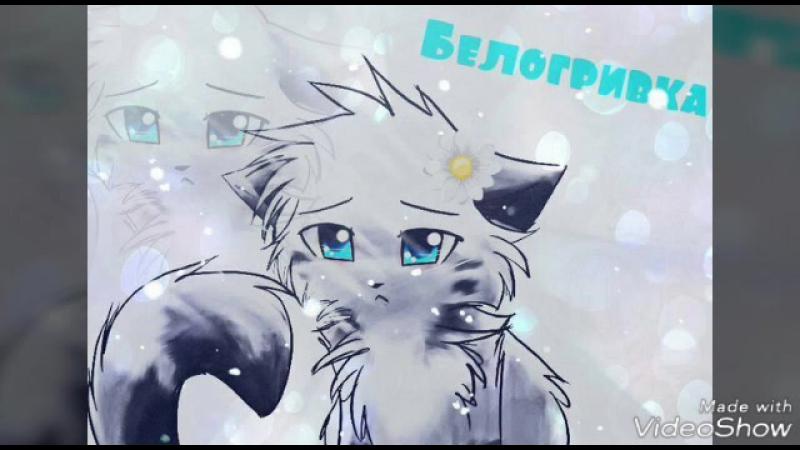 коты воители Белогривка