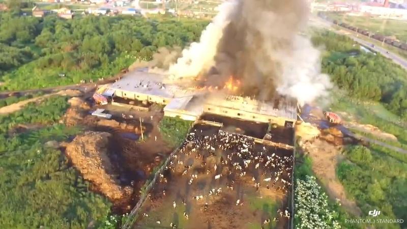 Пожар на ферме СПК «Северный» Соликамск