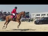 Horses are crazy 😜