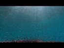 Aly Fila With Aruna The Other Shore Fady Mina Remix
