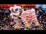 Китайский Новый год в Лондоне