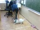 Персик в школе